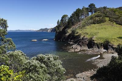 https://imgc.allpostersimages.com/img/posters/coastline-near-tuateawa-coromandel-peninsula-waikato-north-island-new-zealand-pacific_u-L-PQ8MEZ0.jpg?artPerspective=n