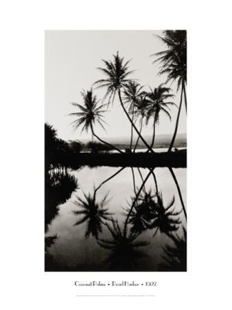 Coconut Palms, Pearl Harbor, Hawaii, 1927