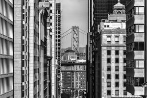 Downtown San Francisco and Bay Bridge by Cody Rasmussen