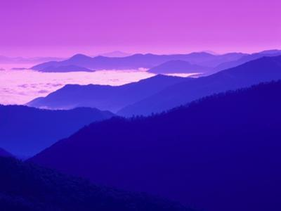 Great Smoky Mountains Under a Purple Sky by Cody Wood