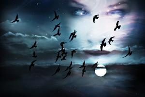 Sky, Birds, Full Moon and Woman Face, Composed from Two Images by coka