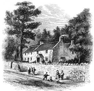 Coleridge Clevedon Cott