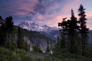 Landscape, Mount Rainier National Park, Washington State, United States of America, North America by Colin Brynn