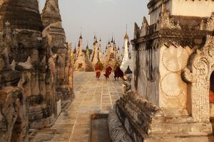 Young Novices Run Through the Pagodas, Kakku Pagoda Complex, Myanmar (Burma), Asia by Colin Brynn