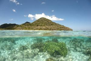 View of island and coral from above and below surface of water, Nyata Island, Lesser Sunda Islands by Colin Marshall