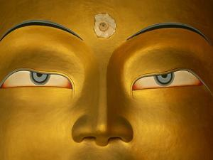 Maitreya, Close Up of Statue Head, Buddha, Tikse Monastery, Ladakh, India, Himalayas by Colin Monteath/Minden Pictures