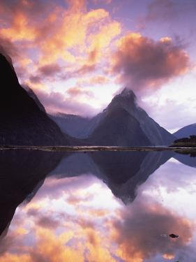 Mitre Peak at Sunset, Milford Sound, Fiordland National Park, New Zealand by Colin Monteath/Minden Pictures