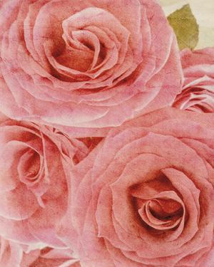 Vintage Romance I by Collezione Botanica