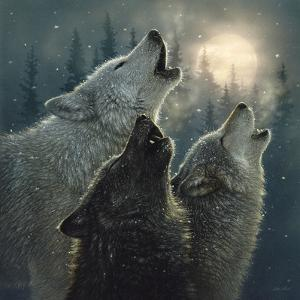Howling Wolves - In Harmony by Collin Bogle