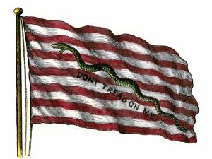 Colonists' Rattlesnake Flag with Don't Tread on Me Slogan