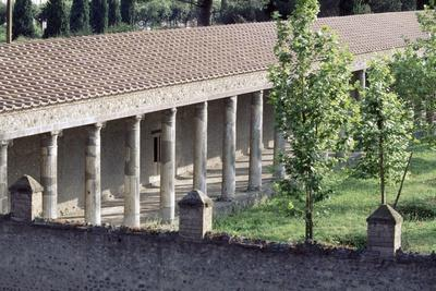 https://imgc.allpostersimages.com/img/posters/colonnade-large-gymnasium-pompeii_u-L-PPQJV50.jpg?p=0