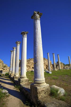 https://imgc.allpostersimages.com/img/posters/colonnades-of-the-gymnasium-salamis-north-cyprus-cyprus-europe_u-L-PXWWJ50.jpg?p=0