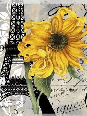 Paris Blanc by Color Bakery