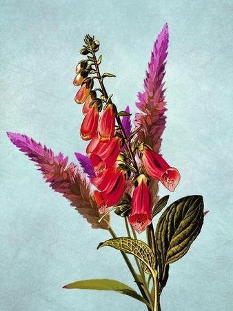 https://imgc.allpostersimages.com/img/posters/color-leaves-b_u-L-Q1CQLYC0.jpg?artPerspective=n