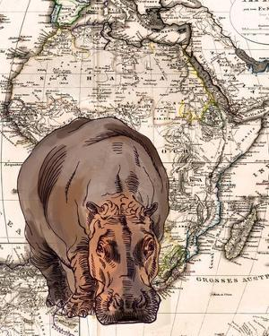 African Hippo by Color Me Happy