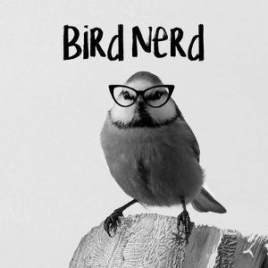 Bird Nerd - Blue Tit by Color Me Happy
