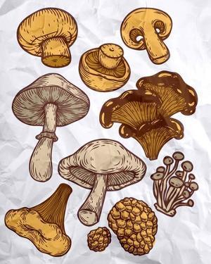 Mushroom Variation by Color Me Happy