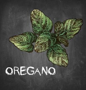 Oregano on Chalkboard by Color Me Happy
