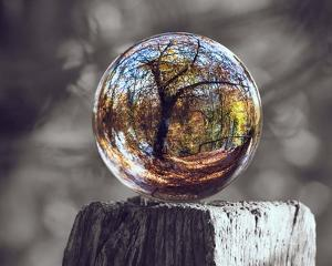 Pop of Color Glass Sphere by Color Me Happy