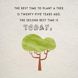 The Best Time to Plant a Tree by Color Me Happy