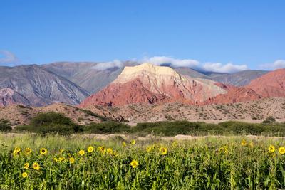 https://imgc.allpostersimages.com/img/posters/coloured-mountains-salta-district-argentina_u-L-PWFGPF0.jpg?p=0
