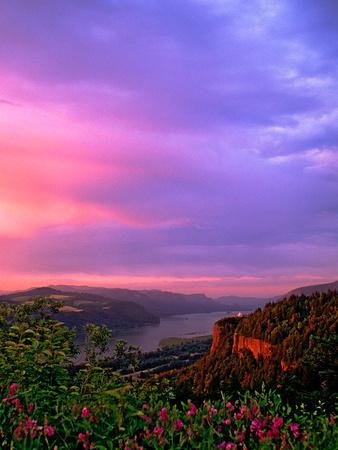 https://imgc.allpostersimages.com/img/posters/columbia-river-gorge-ix_u-L-Q11UQBG0.jpg?p=0