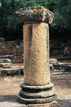 https://imgc.allpostersimages.com/img/posters/column-ancient-city-of-tipasa_u-L-PP9TA80.jpg?p=0