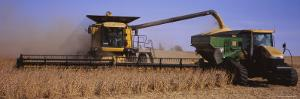 Combine Harvesting Soybeans in a Field, Minnesota, USA