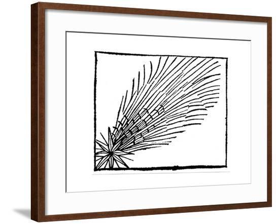 Comet of 684 (Halle), 1493--Framed Giclee Print