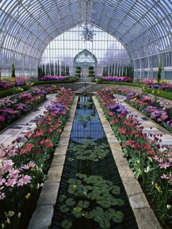 Como Park Conservatory, St. Paul, Minnesota, USA