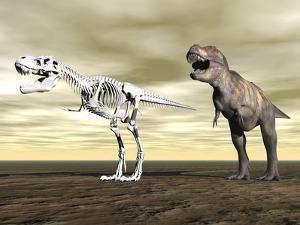 Comparison of Tyrannosaurus Rex Standing Next to its Fossil Skeleton