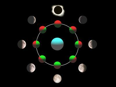 https://imgc.allpostersimages.com/img/posters/composite-time-lapse-image-of-the-lunar-phases_u-L-PZJVEC0.jpg?artPerspective=n