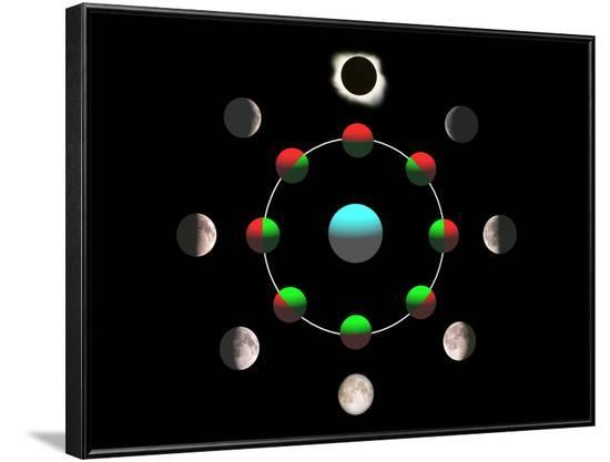 Composite Time-lapse Image of the Lunar Phases-John Sanford-Framed Photographic Print
