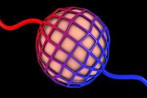 Conceptual Image of Alveolus