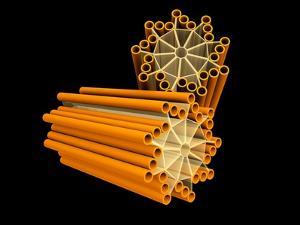 Conceptual Image of Centriole