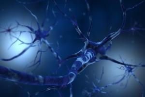 Conceptual Image of Neuron