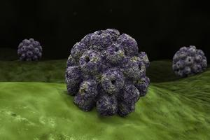 Conceptual Image of Polyomavirus