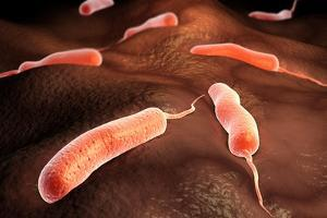 Conceptual Image of Vibrio Cholerae Causing Cholera