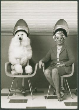 Coneheads Lady and Poodle in Dryers, France