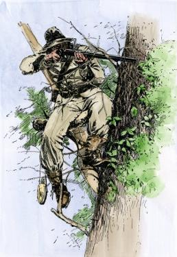 Confederate Sharpshooter Taking Aim from His Perch in a Tree, American Civil War