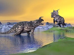 Confrontation Between Two Einiosaurus Dinosaurs