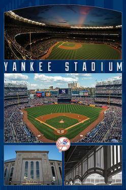 New York Yankees- Stadium 2016 by Connie Haley