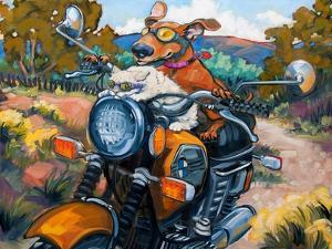 Have Dog Will Travel by Connie R. Townsend