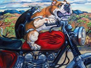 Zippity Do Da by Connie R. Townsend