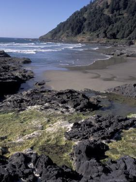 Yachats, Cape Cove, Cape Perpetua Scenic Area, Oregon, USA by Connie Ricca