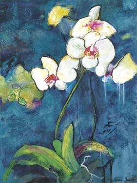 Phalaenopsis II by Connie Tunick