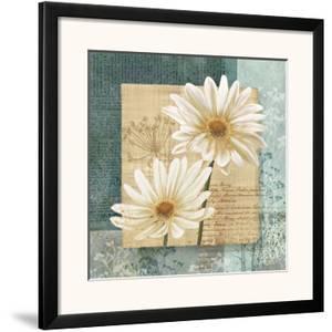 Daisy Field I by Conrad Knutsen