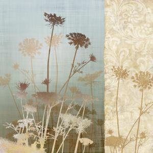 Delicate Fields II by Conrad Knutsen