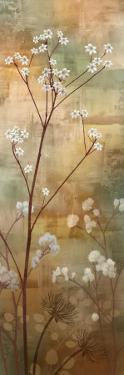 Misty Woods II by Conrad Knutsen