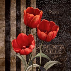 Paris Fleurs I by Conrad Knutsen
